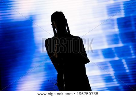 Live Concert. Artist On The Stage