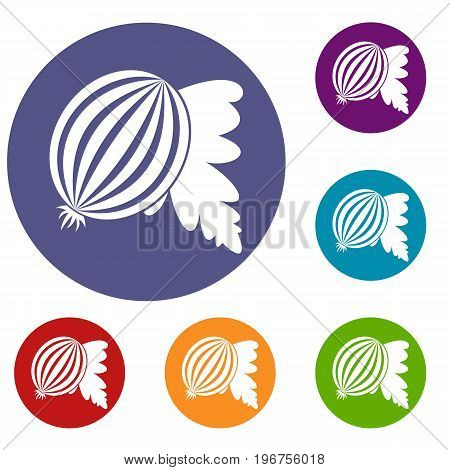 Gooseberry with leaves icons set in flat circle red, blue and green color for web
