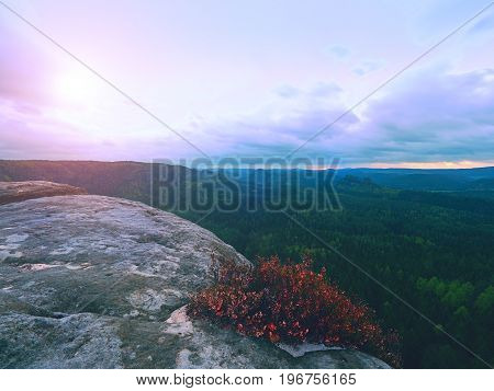 Melancholy Sunrise Above Rocks And Fresh Green Forest, Colorful Valley Full Of Dense Mist