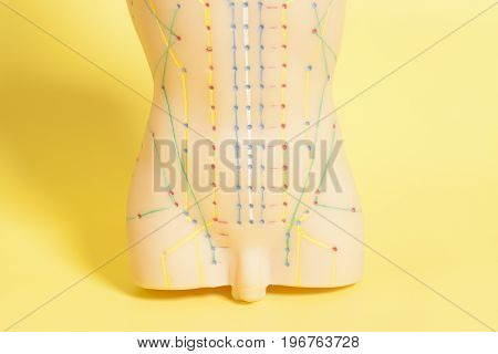 Medical acupuncture model of human on yellow