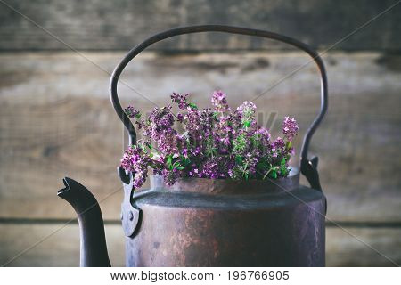 Vintage Rustic Tea Kettle Full Of Thyme Flowers For Healthy Herbal Tea. Herbal Medicine.