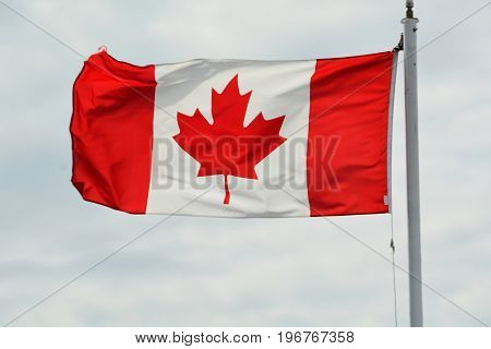 Canada's flag the red maple leaf flies on a flagpole.The flag of Canada.