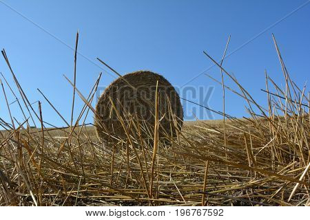 View from the ground on a straw bales with straws