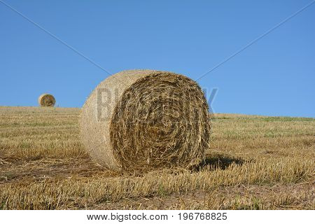 Straw bales on harvested field with hay bales  in horizon  and blue sky