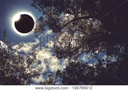 Amazing scientific natural phenomenon. Prominence and internal corona. Total solar eclipse with diamond ring effect glowing on blue sky above silhouette of trees serenity nature. Abstract fantastic background.