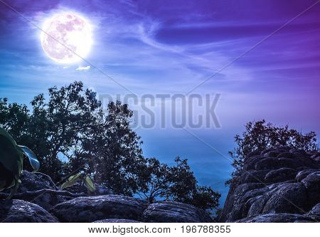 Landscape Of Rock Against Blue Sky And Full Moon Above Wilderness Area In Forest.