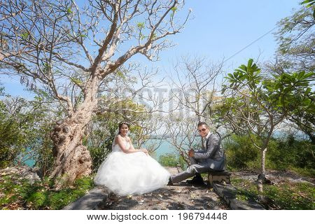 photograph of Pre wedding Asian couples Under a tree in a flower garden in concept of starting a life partner and family life.