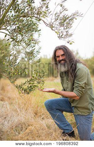 Portrait of happy farmer observing examining olive in farm