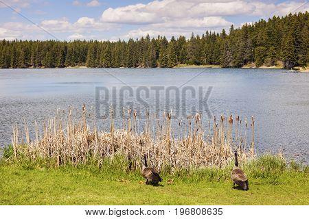 Grasslands National Park of Canada. Saskatchewan Canada.