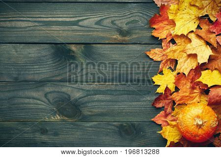Autumn leaves and pumpkin over old wooden background with copy space