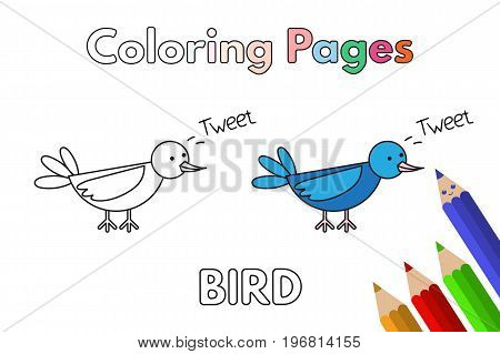 Cartoon bird illustration. Vector coloring book pages for children
