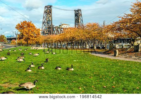 Portland city at autumn, Steel Bridge, Oregon, USA.