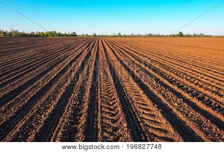 Preparing field for planting. Plowed soil in spring time with blue sky.