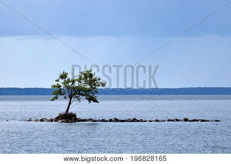 Small rocky island and lonely tree middle of the lake.