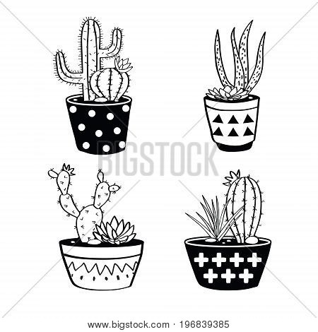 Vector Set With Black And White Cactuses And Succulents In Pots. Modern Scandinavian Design
