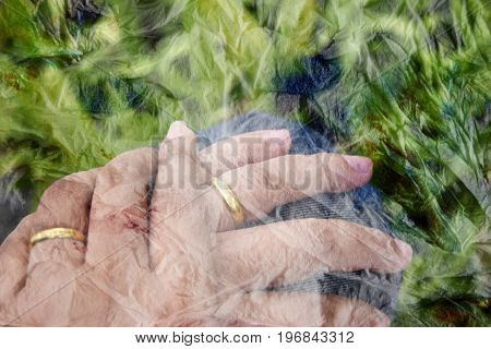 Bright green background a man with a woman hold hands and wear gold ring on it left finger