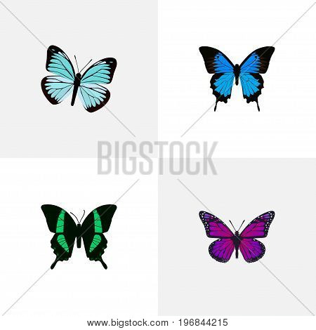Realistic Lexias, Purple Monarch, Common Blue And Other Vector Elements