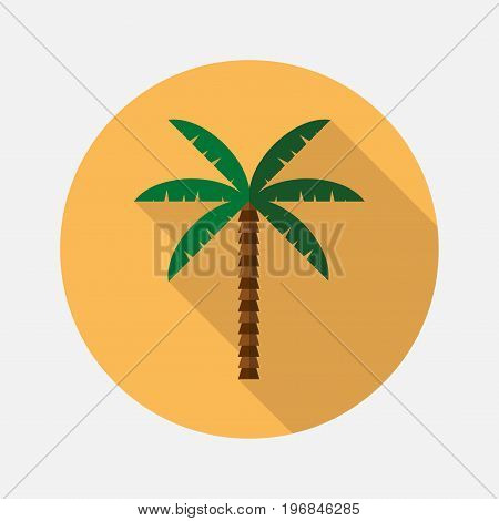 palm flat illustration. Vector sign for web graphics.