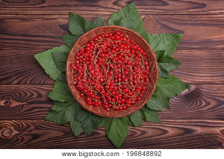Beautiful composition of fresh, raw currant with leaves in a small crate on a wooden table. Juicy and delicious red currant in a brown basket. Healthful breakfast for vegetarians.