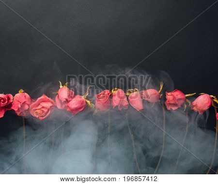 goth style dry roses, black background with smoke