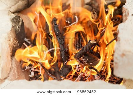 Burning brushwood in a hot open fire