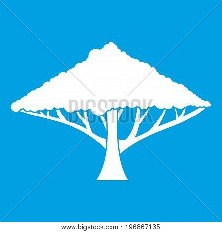 Tree with a spreading crown icon white isolated on blue background vector illustration
