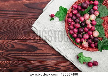Juicy, healthy, ripe multicolored gooseberries with green leaves in a light brown basket on a dark brown wooden table. Gooseberries different shades of bright red color.