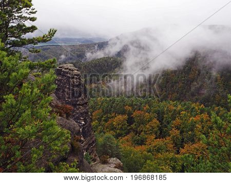 Sandstone Pillas In National Park Czech Switzerland In Foggy Autumn With Pine Tree Forest