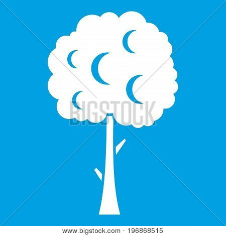 Tree with spherical crown icon white isolated on blue background vector illustration
