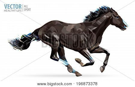 A horse gallops fast, vector illustration silhouette. White background.