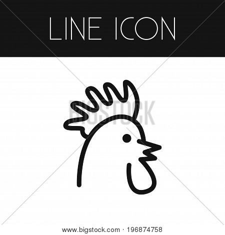Cockerel Vector Element Can Be Used For Cockerel, Chicken, Rooster Design Concept.  Isolated Chicken Outline.