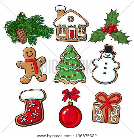 Set of glazed homemade Christmas gingerbread cookies, mistletoe, fir tree branches sketch style vector illustration isolated on white background. Christmas gingerman