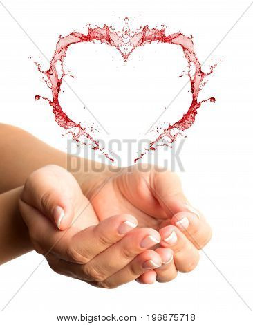 Woman hands with heart shape isolated on a white background