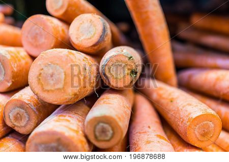Macro Closeup Of Large Thick Carrots On Display