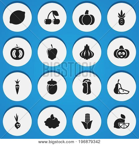 Set Of 16 Editable Cookware Icons. Includes Symbols Such As Pumpkin, Pear Piece, Comical Garlic And More