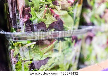 Macro Closeup Of Mixed Green Salad In Boxes On Display