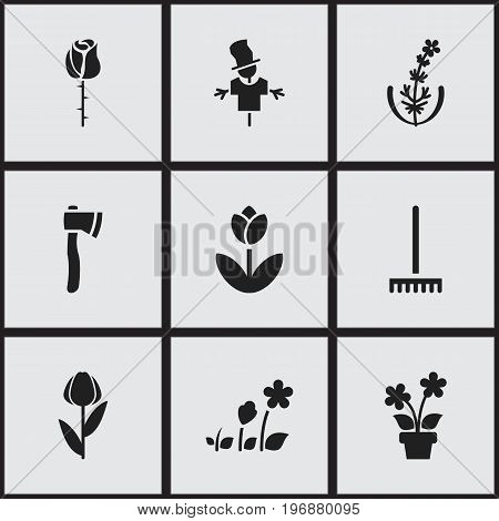Set Of 9 Editable Gardening Icons. Includes Symbols Such As Bugaboo, Tomahawk, Alstroemeria And More