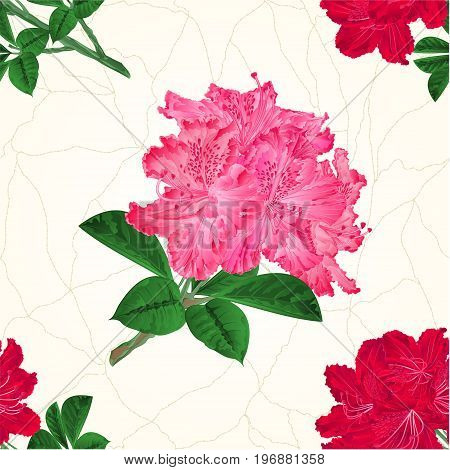 Seamless texture flowers pink and red rhododendrons twig vintage vector illustration hand draw