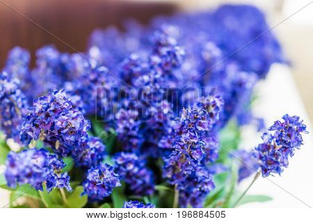 Blue Purple Tall Long Fake Lupine Flowers As Decoration
