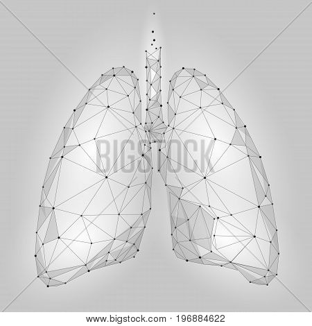 Human Internal Organ Lungs. Low Poly technology design. White Gray color polygonal triangle connected dots. Health medicine icon background vector illustration art