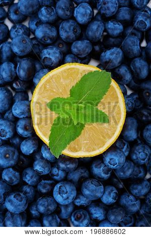 Close-up of fresh blueberry as texture background and a juicy bright yellow half of lemon with green leaves at the center of it. Ripe half of lemon with fresh mint  leaves on a blueberry background.