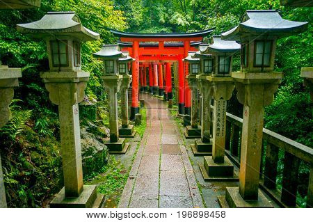 KYOTO, JAPAN - JULY 05, 2017: Torii gates of Fushimi Inari Taisha shrine in Kyoto, Japan. There are more than 10, 000 torii gates at Fushimi Inari.