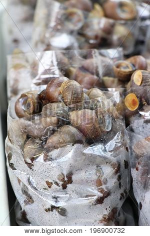Fresh shellfish for cooking in the market