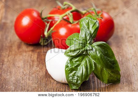 mozarella basil and tomatoes on dark wood