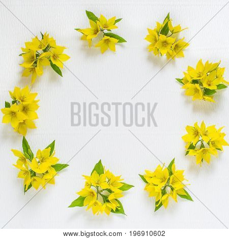 Festive flower arrangement. Flowers loosestrife (lysimachia) in yellow packing on white textured background. Top view flat lay square image