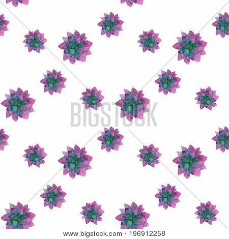 Seamless pattern made of hand-drawn watercolor succulent plant isolated on white background
