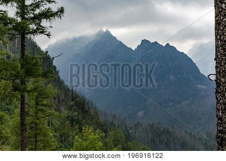 Inspiring Mountains Landscape cloudy day in summer Tatras woods and mountain ridge over cloudy sky Slovakia