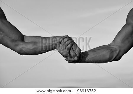 hands or arms of men muscular with biceps triceps handshake or wrestling outdoor on natural background black and white