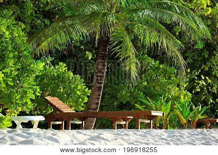 Wooden sun loungers on tropical beach in summer day
