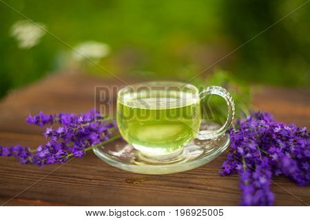 Green Lavender Tea In  Beautiful Cup